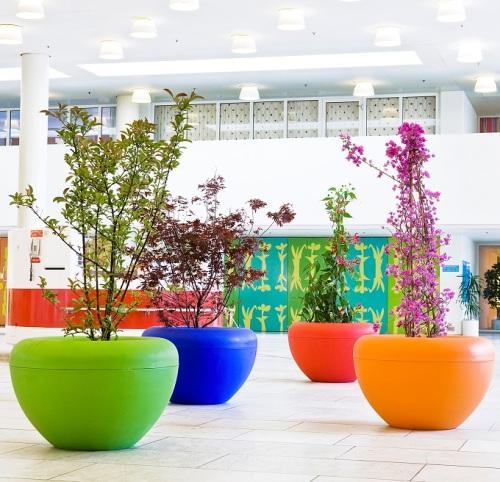 How to Arrange Outdoor Flower Planters in Colors