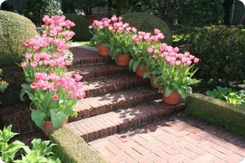 How to Arrange Outdoor Flower Planters in Pink