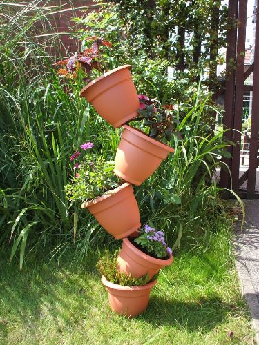 How to Arrange Outdoor Plants in Pots In Cute Style