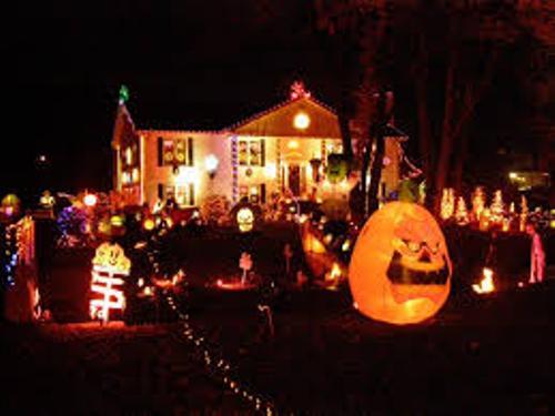 Bushes for Halloween Celebration