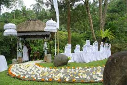 Garden for Wedding Design