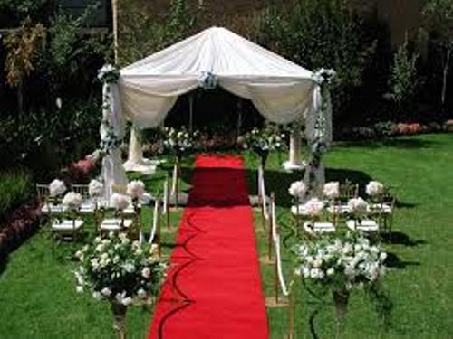 Garden for Wedding Ideas