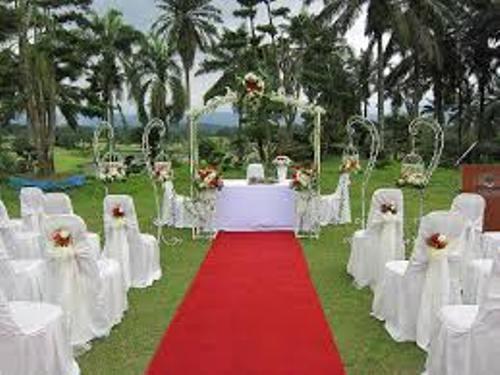 Garden for Wedding Pic