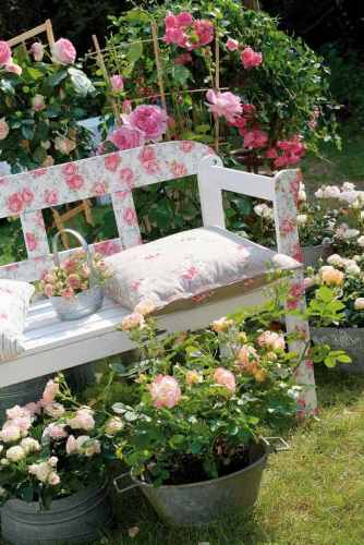 Garden on a Budget with Pink Roses