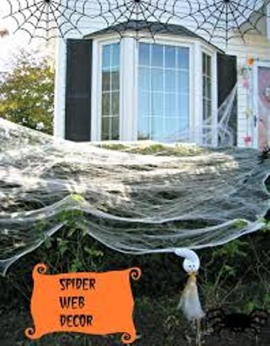 Halloween Spiderweb Decor