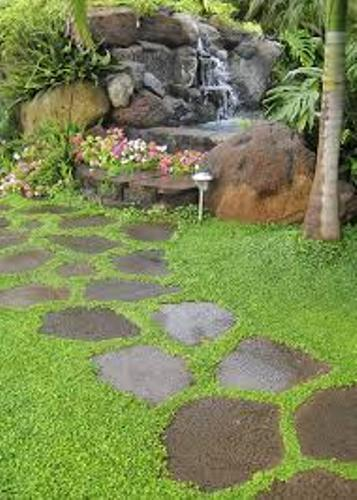 Perfect Garden Stepping Stones