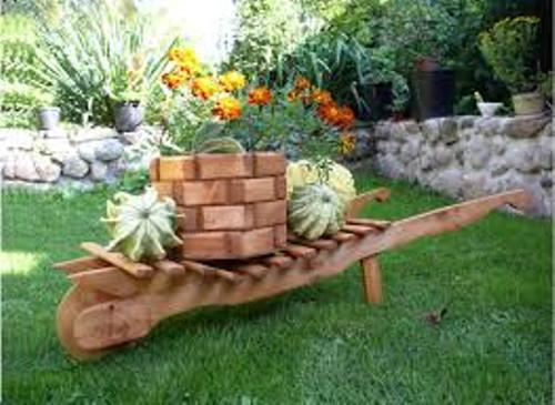 Garden with Wooden Log