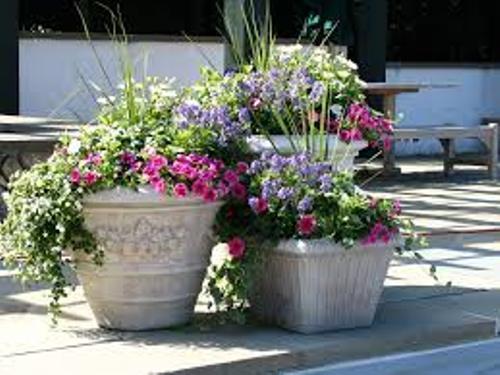 How to Arrange Garden Pots
