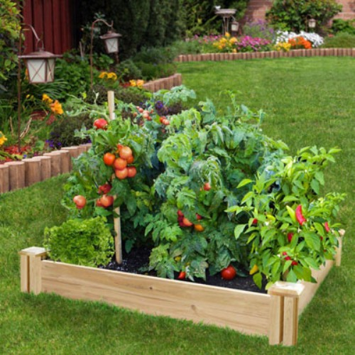 How to Arrange a Garden Bed