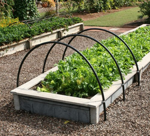How to Arrange Vegetable Garden Beds