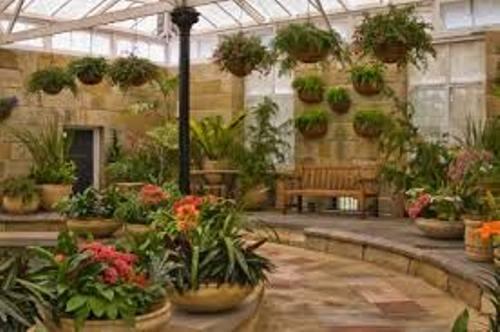 How to Start a Garden Indoors