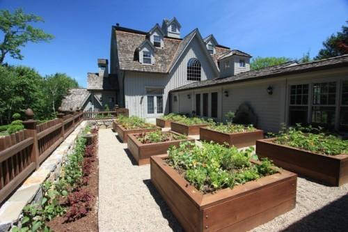 Impressive Vegetable Garden Box