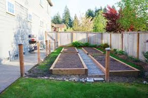 Modern Vegetable Garden In Your Backyard