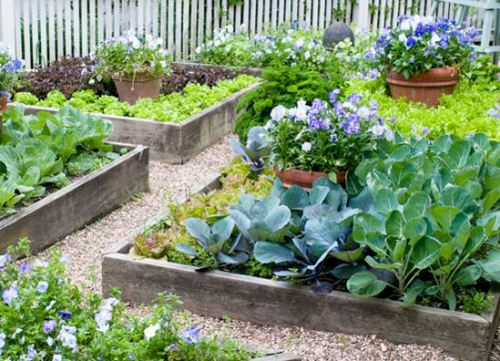 How to make a vegetable garden in small spaces 5 ways for adorable garden style home for Amazing small gardens