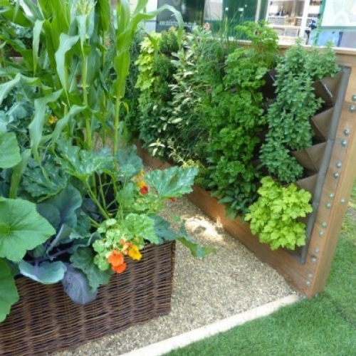 How to make a vegetable garden in small spaces 5 ways for for Limited space gardening ideas