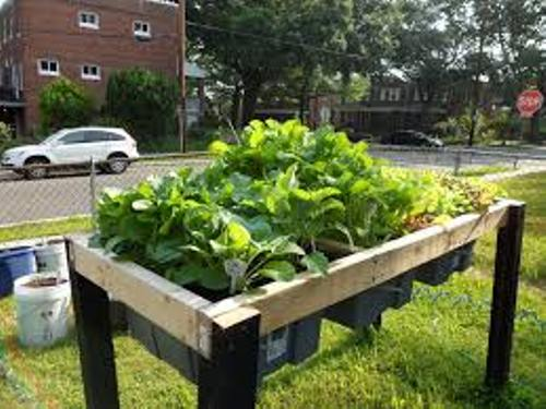 How to Make a Vegetable Garden in Clay Soil
