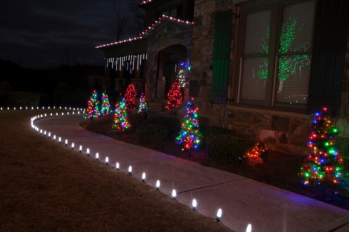 Christmas Lights for Bushes