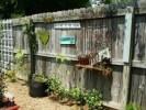 How To Decorate Garden Fence: 5 Ideas For Unique Fences