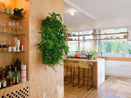 Kitchen Wall with Shelves