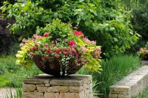 Pot de jardin en plastique