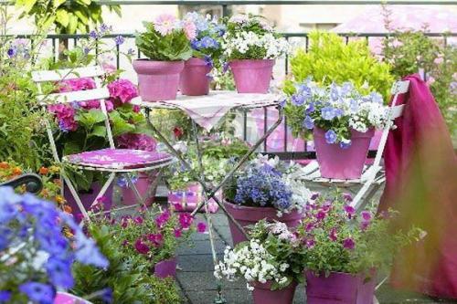 Pots de jardin en plastique violet