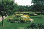 How To Arrange A Garden Bed: 5 Guides For Great Flower Bed