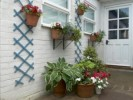 How To Arrange Garden Pots: 5 Ideas For Fantastic Garden Design