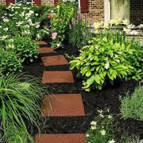 Garden with Black Mulch