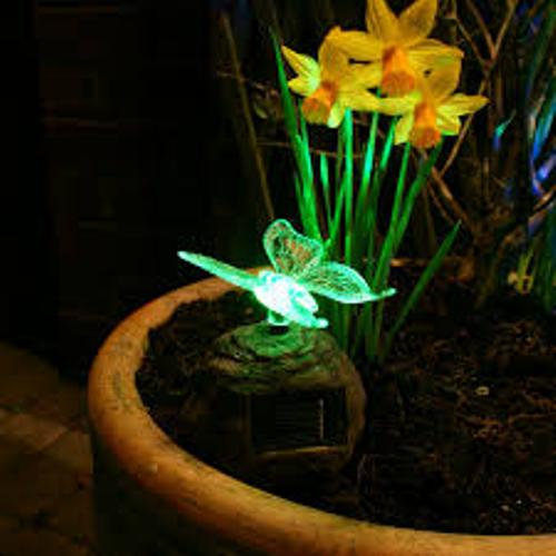 Garden with Green Solar Lights
