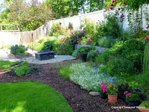 Garden with Mulch Design