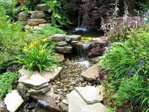 Garden with Pebbles and Rocks