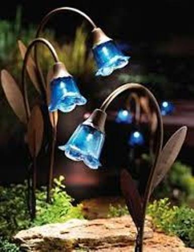 Garden with Solar Light