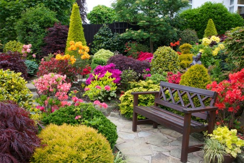 How to Arrange a Garden of Flowers