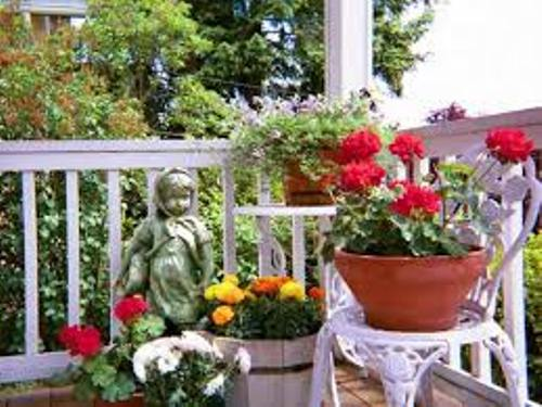 How to Decorate Garden with Flower