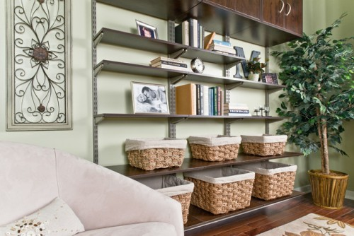 Living Room Bookshelves Ideas