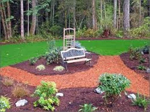 Modern Garden with Mulch