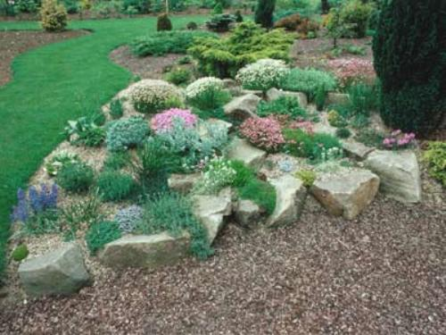 Stylish Garden with Rocks