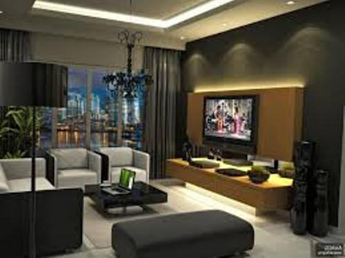 Chic Living Room with a TV