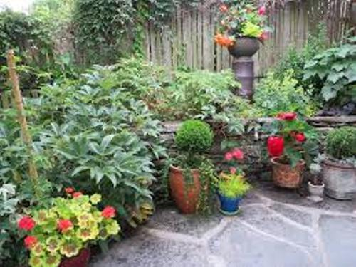 Decorative Pots on a Patio