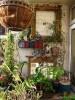 How to Make a Vegetable Garden on a Patio: 5 Tips for Adorable Garden Ideas