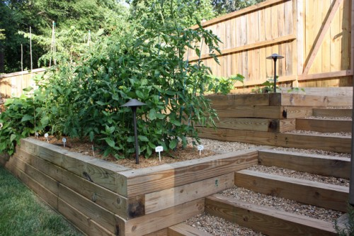 How to Make Vegetable Garden on Terrace