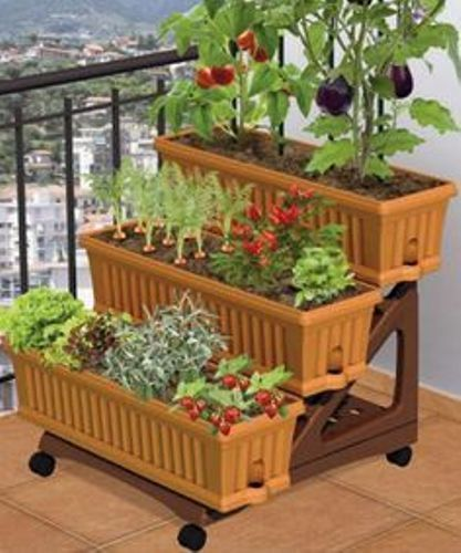 How to Make a Vegetable Garden on a Patio