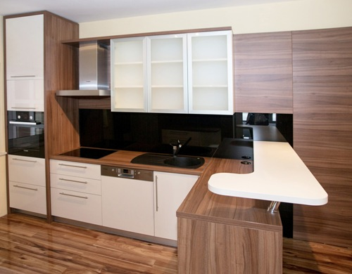 Modern Kitchen Cabinets in an Apartment