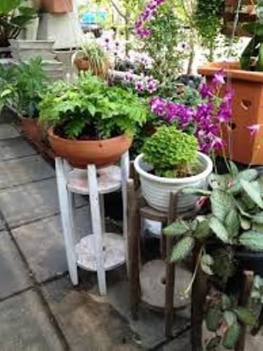 Pots in a Small Garden Ideas