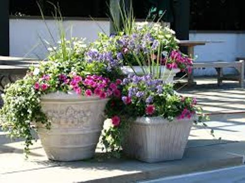 Pots on a Patio Pictures