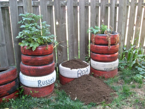 How to Plant Potatoes in Tires