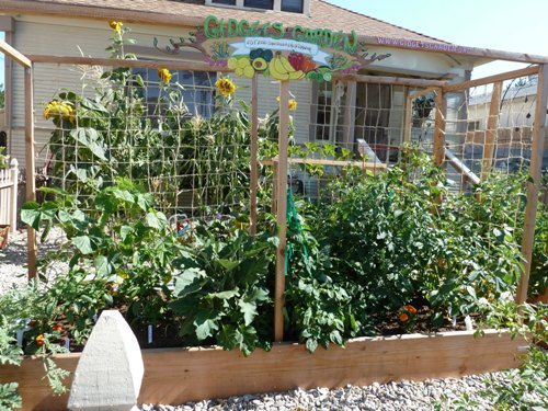 How to make a vegetable garden in small spaces 5 ways for Small nice garden